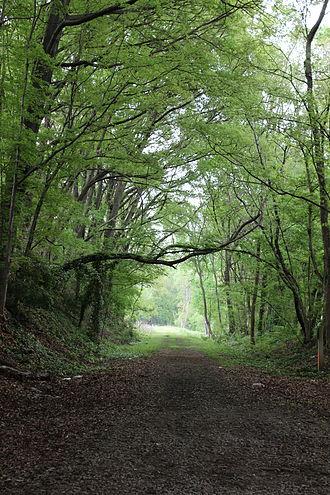 BeltLine - The Westside BeltLine is a yet unpaved mixed-use green space in the Atlanta Metropolitan region. Established on the site of a former railroad line, the Westside BeltLine links the neighborhoods of West End, Adair Park, Washington Park, and Vine City.