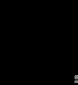 Wiktionary-logo-ka copy.png