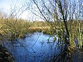 Wild Fowl Sanctuary - geograph.org.uk - 22230.jpg