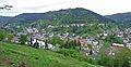 Wildbad-Panorama-5.jpg