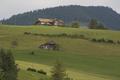 WilerReichenbach-20130717i.png
