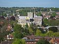 Winchester Cathedral, from St Giles Hill.jpg