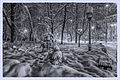 Winter landscape night light Kiev Ukraine (8328833343).jpg