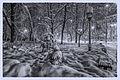 Winter landscape night light Kiev Ukraine (8328833343).jpg
