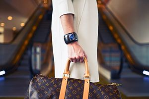 Female intrasexual competition - This is a picture of a woman shopping a luxury brand: Louis Vuitton (LV)