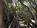 Woolooware - panoramio.jpg