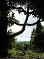 X Marks the Spot - geograph.org.uk - 1403739.jpg