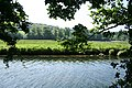 Yealmpton, the tidal Yealm - geograph.org.uk - 459980.jpg
