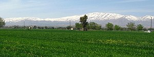 Zakiyah - Zakiyah with Mount Hermon in the background