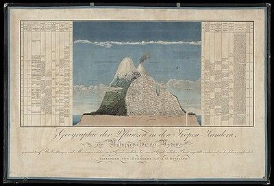 Abbildung aus Ideen zu einer Geographie der Pflanzen nebst einem Naturgemälde der Tropenländer, Paris 1805 (Quelle: Wikimedia)