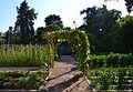 Zona d'horta del jardí botànic de València.JPG