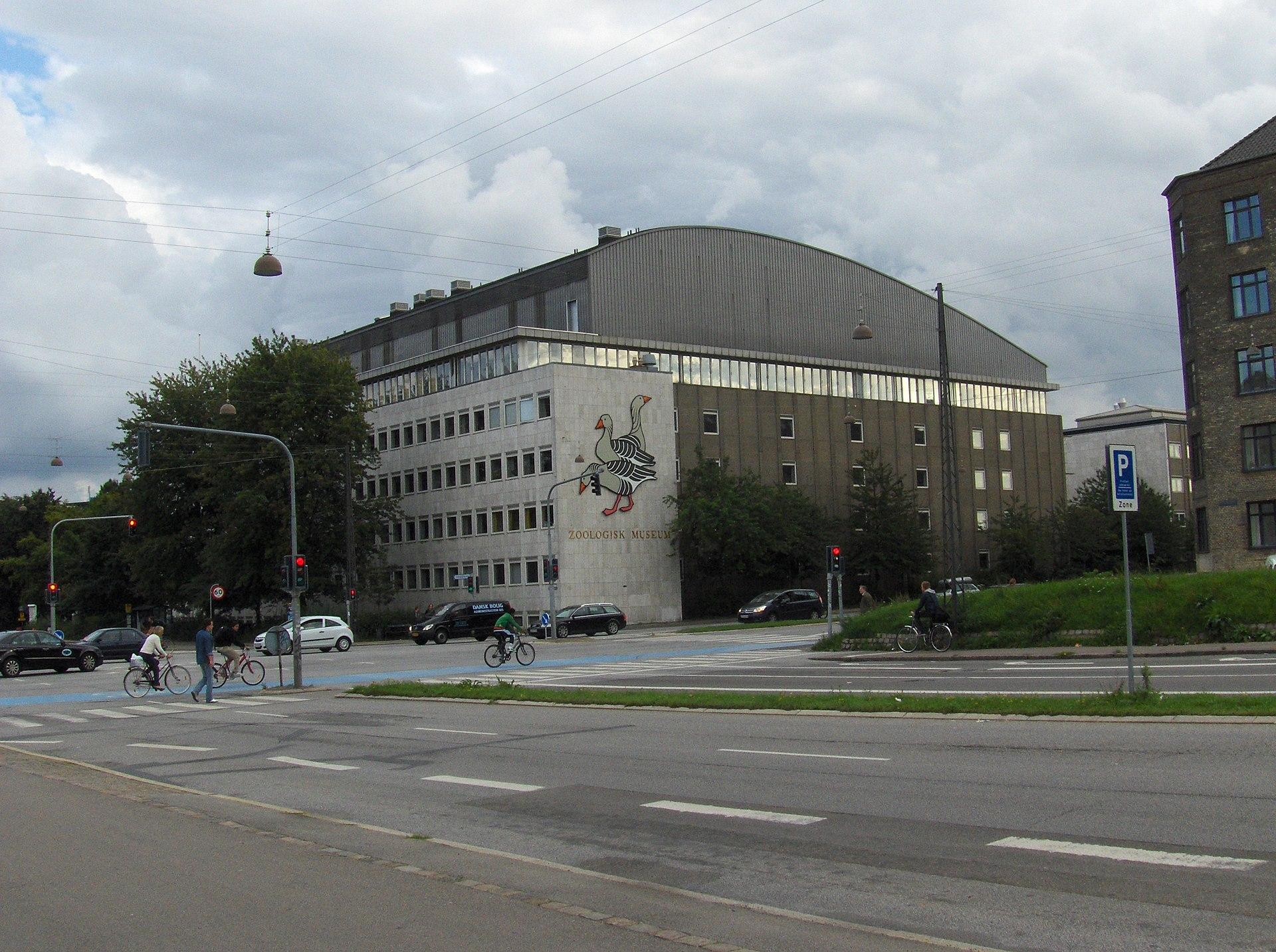 big prale museum København gratis
