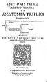 """Amphitheatrum anatomicum"", Fludd, 1623 Wellcome L0002205.jpg"