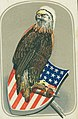 """Old Abe"" (Illustration of an American Eagle on a shield).jpg"