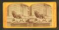 "(Sculpture) ""The dying lioness."", from Robert N. Dennis collection of stereoscopic views.png"