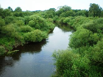 Šešupė - The Šešupė river near Pilviškiai