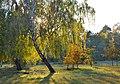 Бобровня восени 01.jpg