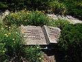 Братська могила №3 Борзна центр 14.jpg