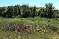 В районе бывшей деревни Херсонки - panoramio.jpg