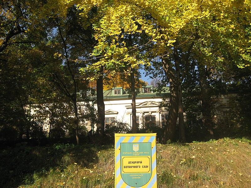 File:Дендрарій ботанічного саду, Львів.jpg