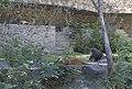 Киевский зоопарк (32).jpg