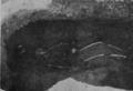 Мал. 51. Підбойне поховання.png