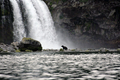 Медведь у водопада Птичий.png