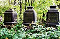 На Смоленском лютеранском кладбище - panoramio (2).jpg