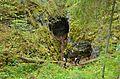 Оленьи ручьи - panoramio (5).jpg