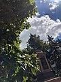 Пам'ятник І.;Г.;Харитоненку — меценату, пл. Покровська, сквер ім. І.Г.;Харитоненка.jpg