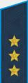 Погон генерал-полковника ВВС с 2010 года.png