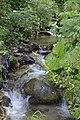 Реката Камештица во Нежилово (3).jpg
