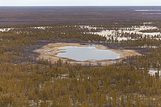 Central Yakutian Lowland plain