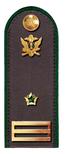 Советник ГГС РФ 3 класса ФССП.png