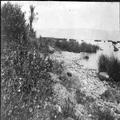 טיול קבוצתי של ציונים בגרמניה לארץ ישראל ב- 1913. הירדן וכנרת (Jordan am Tibrtia-PHAL-1619687.png