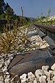 רכבת העמק - מעבירי מים והסוללה - צומת העמקים - עמק יזרעאל והגלבוע (58).JPG