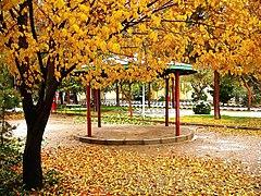 نمایی پاییزی از قم ، بوستان هاشمی