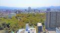 三島市中心部(三島広小路周辺).png