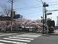 天神川高辻 - panoramio (5).jpg