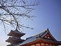 清水寺 Kiyomizu-dera Temple - panoramio.jpg