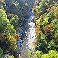 荒川-白川橋-紅葉-02 - panoramio.jpg