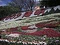 陽明山2009年3月 - panoramio - Tianmu peter.jpg