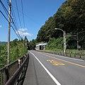 青梅街道-01 - panoramio.jpg