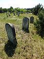 --- Culture Trail - Kirkut in Kierkow - Gmina Zarki Powiat Myszkowski 6.JPG