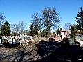 - Cmentarz Nowofarny - panoramio (26).jpg