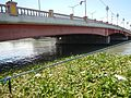 07598jfSanta Cruz Manila Pasig River Ferry Streets Landmarksfvf 14.jpg