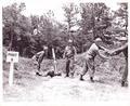 124th Armored Rifle Battalion, Mortars, Florida National Guard.pdf