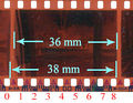 135 film perforations.jpg