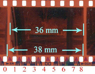 135 film perforations