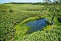 140829 At Shiretoko Goko Lakes Hokkaido Japan11o.JPG